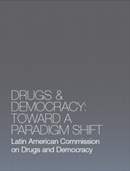 drugs-democracy_statement